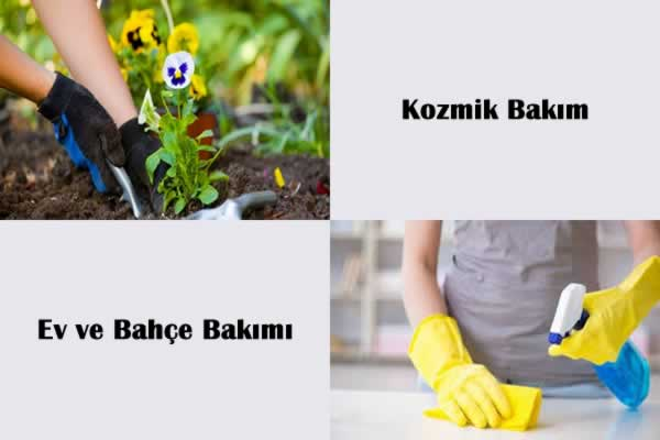 Kasım 2019 Ay Takvimi Ev ve Bahçe Bakımı