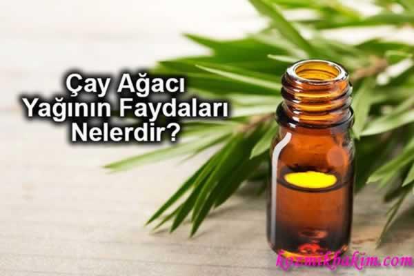 Yeşil Çayla Bakım Önerileri