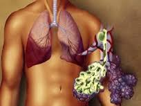 Ciğer ve Safra Hastalıklarına Karşı Faydalı Macun
